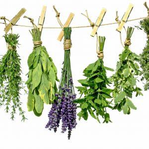 Bulk Herbs